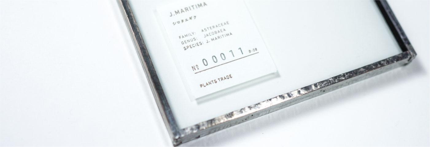 pt_top_letterpress-4